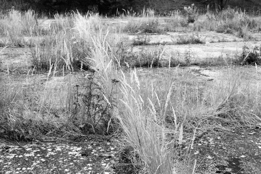 Konzentrationslager Uckermark