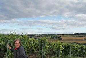 Andrea Halbritter Übersetzer Französisch-Deutsch Wein