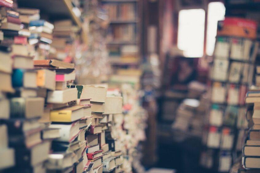 Bücher, die Übersetzer lesen sollten