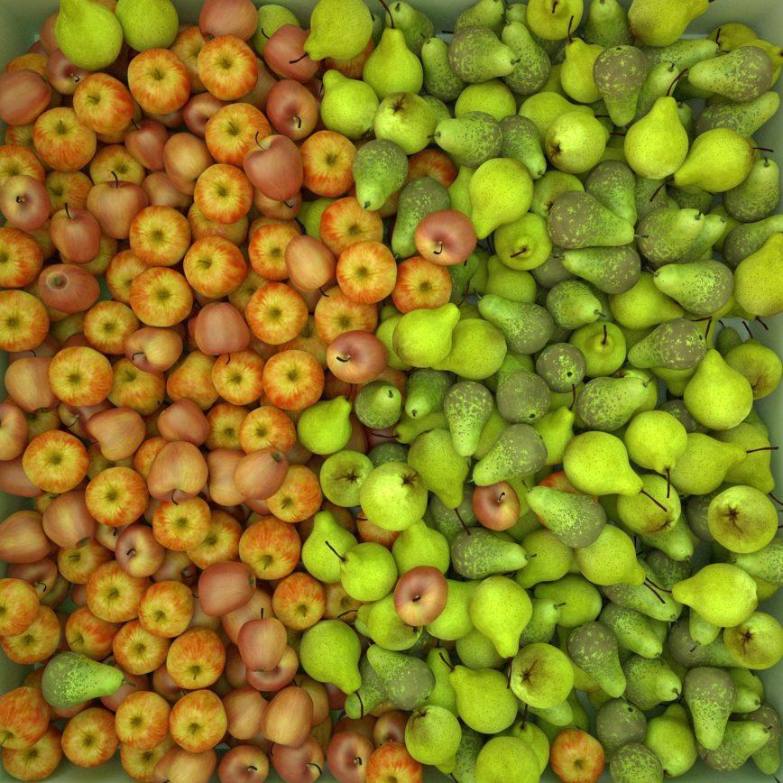 Äpfel und Birnen